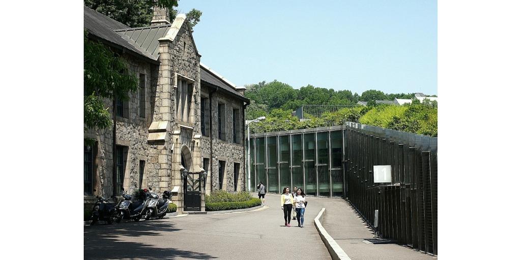 teaching in korean universities