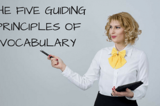 The five guiding principles of vocabulary learning