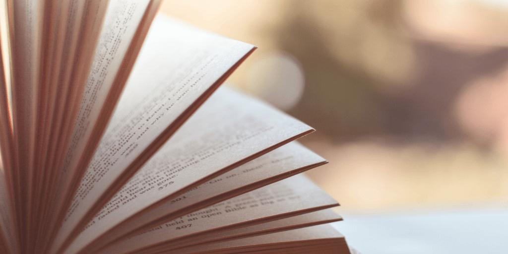 My Path to Teaching English Literature