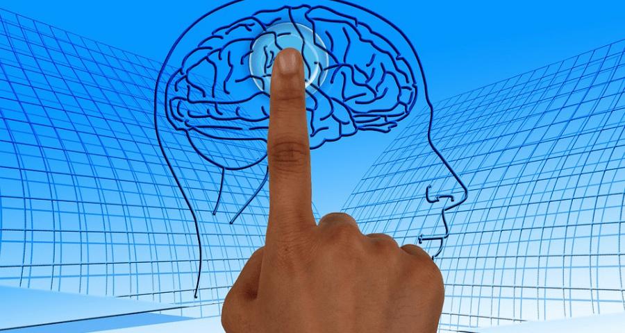 Coaching, Language Coaching and Neurolanguage Coaching